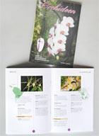 Orchideenbuch